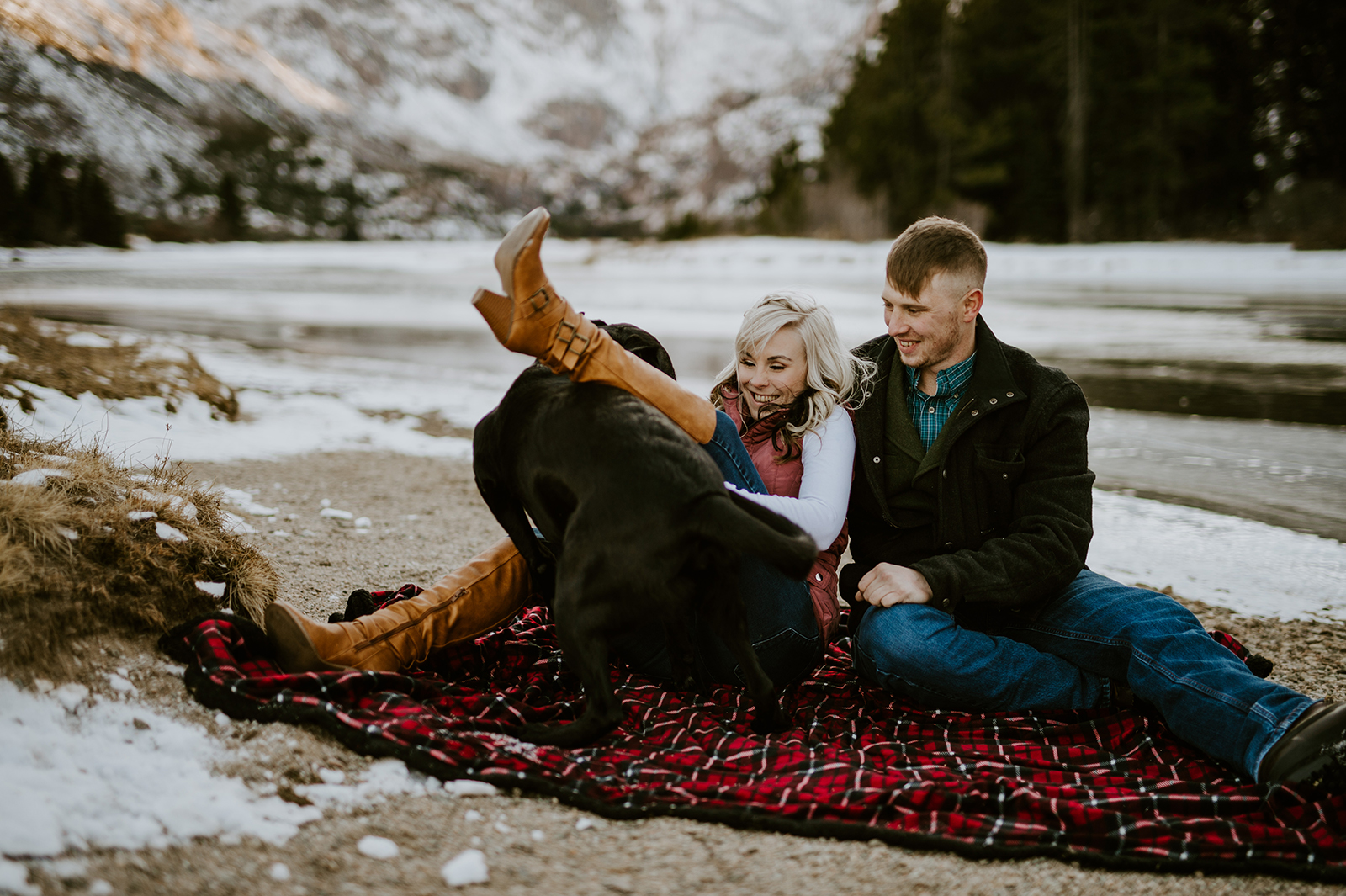 engagement with dog